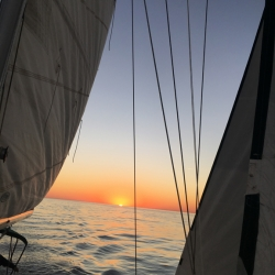 harvest moon regatta 2020
